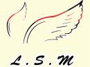 青岛LSM社区:HR入社报名申请