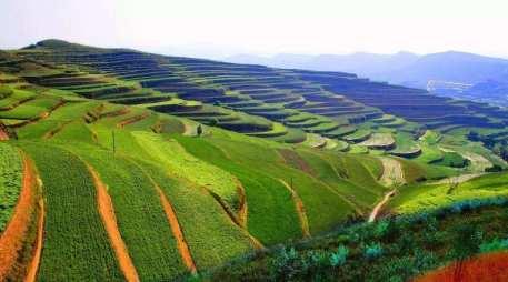 新农业企业融资需要注意什么?