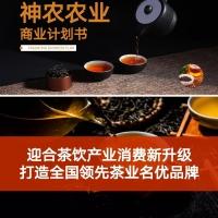 茶叶种植加工观光项目