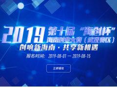 """2019第十届""""海创杯""""海南创业大赛武汉赛区"""