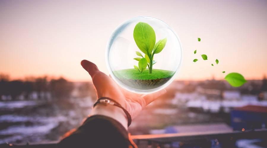 环保类型创业小项目有哪些?(上)