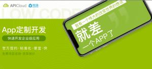 【微链用户专享】移动应用开发咨询服务